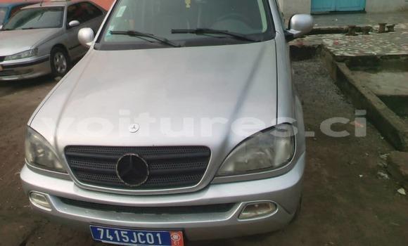 Acheter Importer Voiture Mercedes‒Benz ML–Class Gris à Abidjan, Abidjan