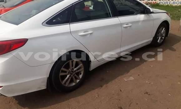 Acheter Importé Voiture Hyundai Sonata Blanc à Abidjan, Abidjan