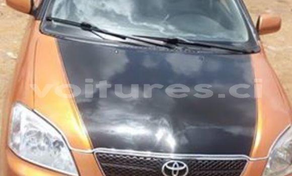 Acheter Occasion Voiture Toyota Corolla Beige à Abidjan, Abidjan