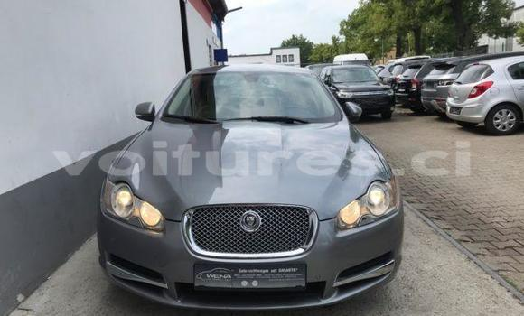 Medium with watermark jaguar xf 0